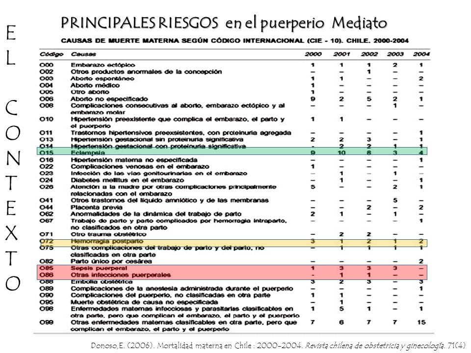 PRINCIPALES RIESGOS en el puerperio Mediato Donoso,E. (2006). Mortalidad materna en Chile : 2000-2004. Revista chilena de obstetricia y ginecología. 7