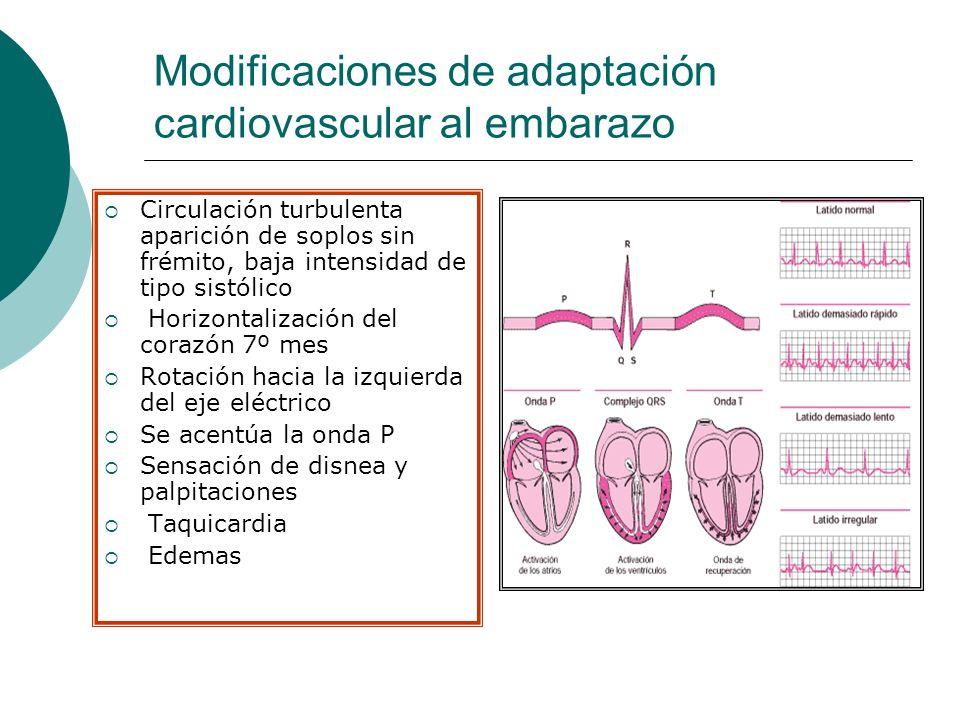 Modificaciones de adaptación cardiovascular al embarazo Circulación turbulenta aparición de soplos sin frémito, baja intensidad de tipo sistólico Hori