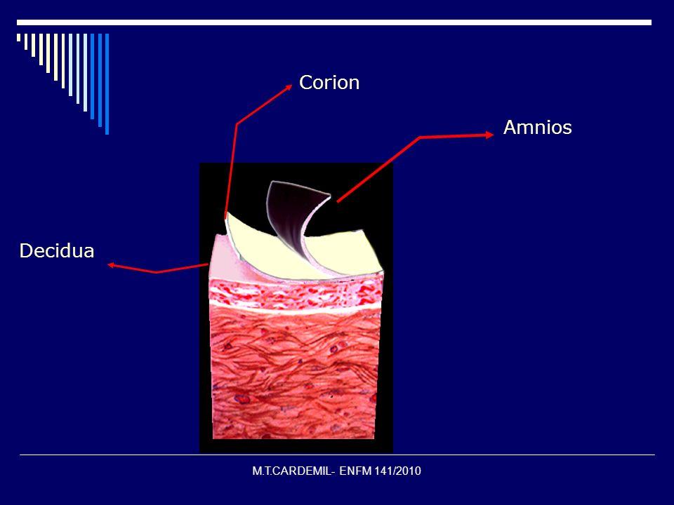 M.T.CARDEMIL- ENFM 141/2010 Amnios Corion Decidua