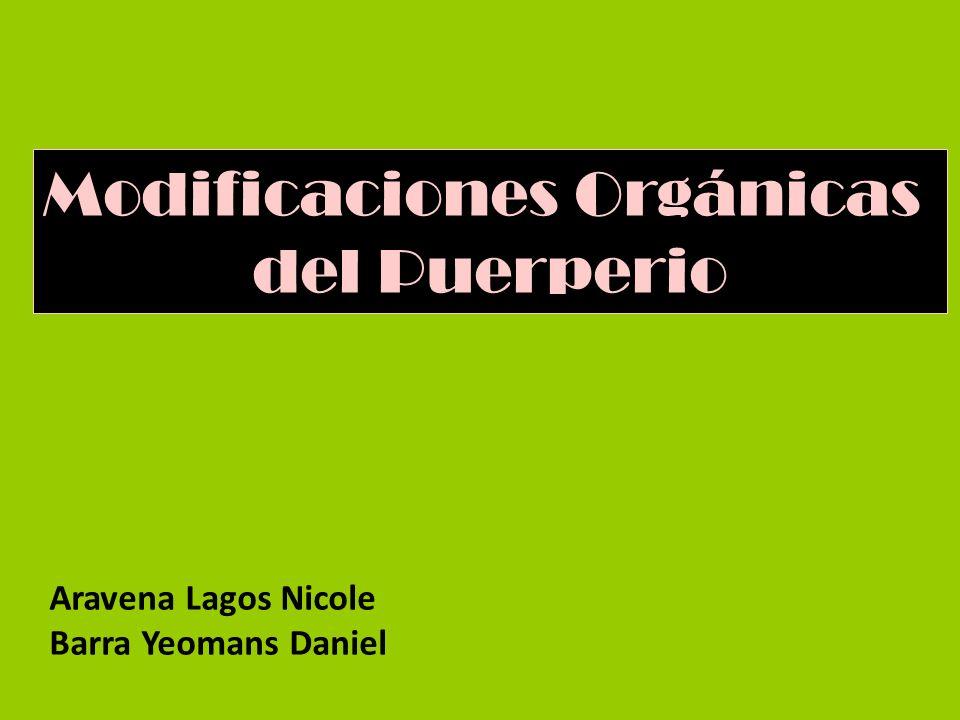 Modificaciones Orgánicas del Puerperio Aravena Lagos Nicole Barra Yeomans Daniel