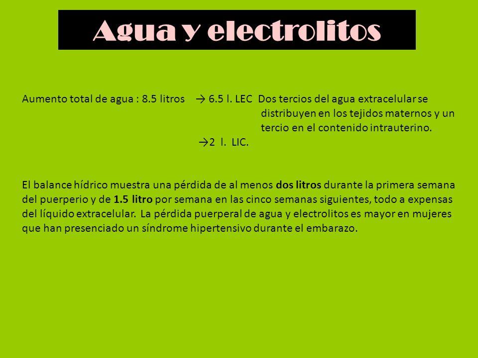 Aumento total de agua : 8.5 litros 6.5 l. LEC Dos tercios del agua extracelular se distribuyen en los tejidos maternos y un tercio en el contenido int