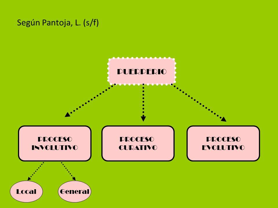 Loquios hemáticos o sanguinolento (primeras 48 horas) Loquios rosados o serohemáticos (desde el 3er día hasta el 5to día) Loquios blancos o serosos (desde el 6to hasta el 7mo día)