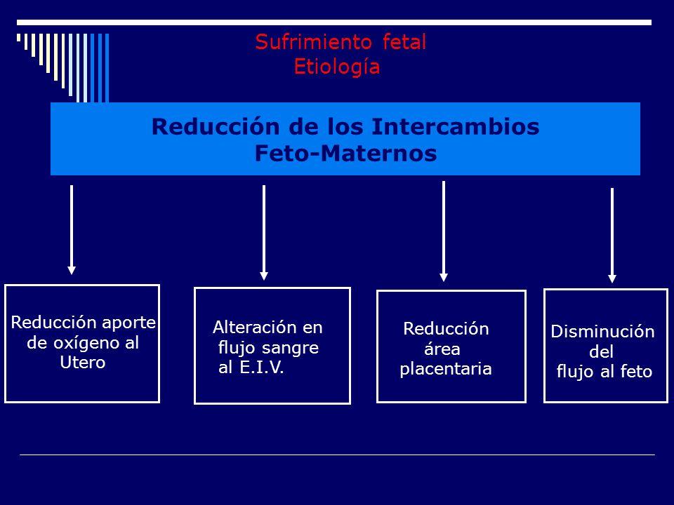 CAUSAS DE SUFRIMIENTO FETAL Ambientales: disminución de la presión parcial de oxígeno ambiental.( residencia en altura, industrias ) Causas maternas: disminución de flujo sanguíneo,, de la concentración de O 2,,.