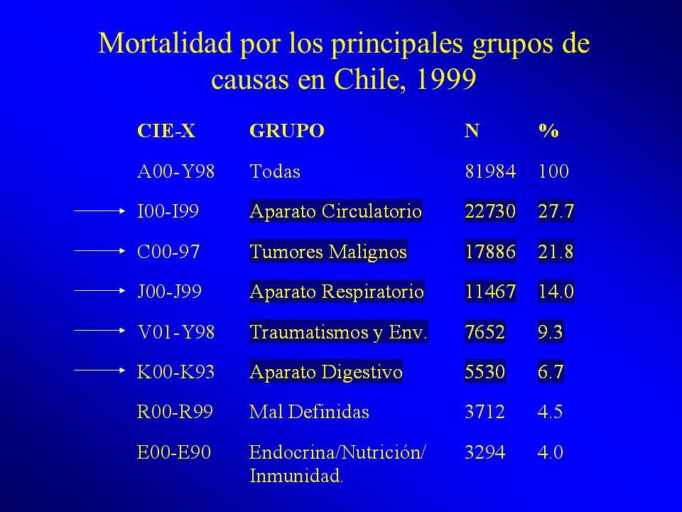 Mortalidad por los principales grupos de causas en Chile, 1999