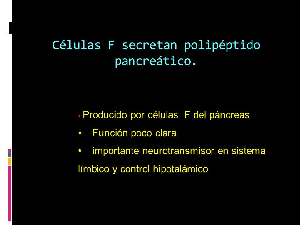Células F secretan polipéptido pancreático. Producido por células F del páncreas Función poco clara importante neurotransmisor en sistema límbico y co