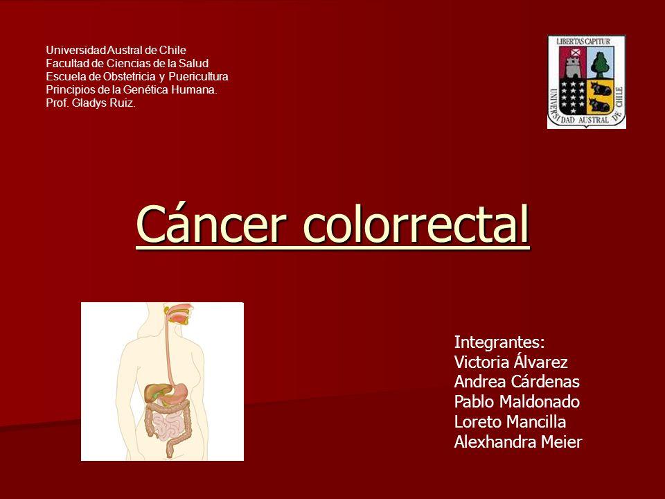 Cáncer colorrectal Comienza en el intestino grueso Comienza en el intestino grueso o en el recto.