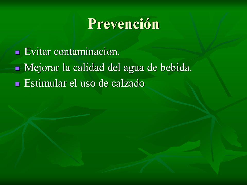 Prevención Evitar contaminacion. Evitar contaminacion. Mejorar la calidad del agua de bebida. Mejorar la calidad del agua de bebida. Estimular el uso