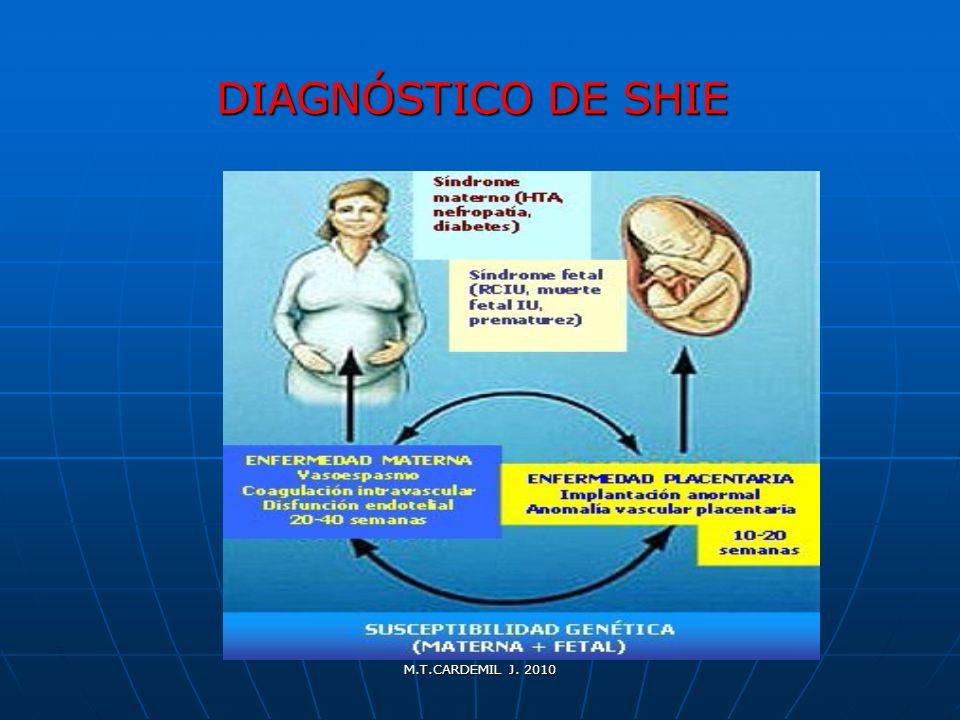 M.T.CARDEMIL J. 2010 DIAGNÓSTICO DE SHIE