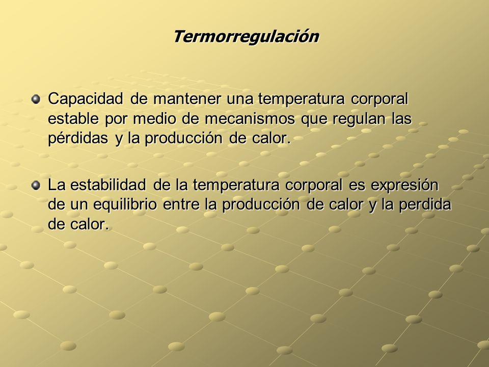 Termorregulación Capacidad de mantener una temperatura corporal estable por medio de mecanismos que regulan las pérdidas y la producción de calor. La