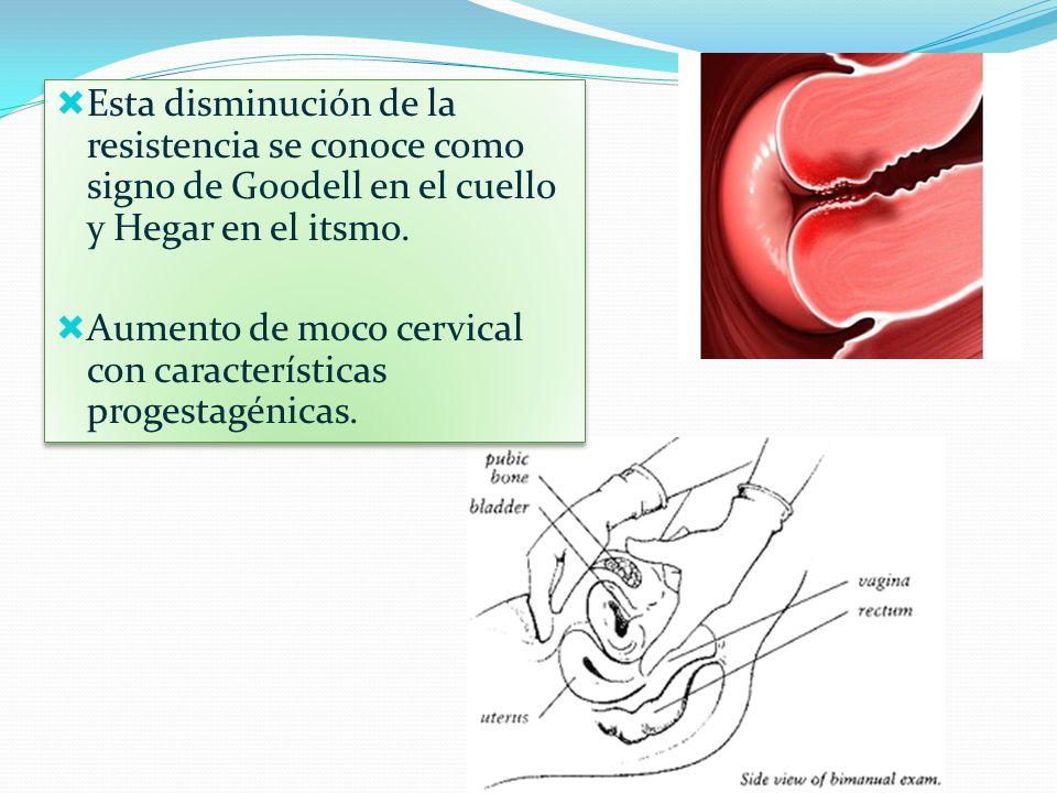 Esta disminución de la resistencia se conoce como signo de Goodell en el cuello y Hegar en el itsmo. Aumento de moco cervical con características prog