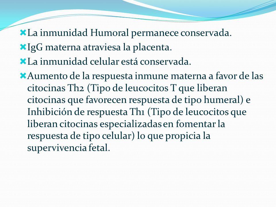 La inmunidad Humoral permanece conservada. IgG materna atraviesa la placenta. La inmunidad celular está conservada. Aumento de la respuesta inmune mat
