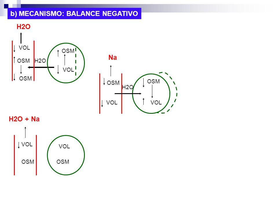 b) MECANISMO: BALANCE NEGATIVO VOL OSM VOL OSM VOL OSM VOL OSM H2O OSM H2O OSM H2O Na H2O + Na