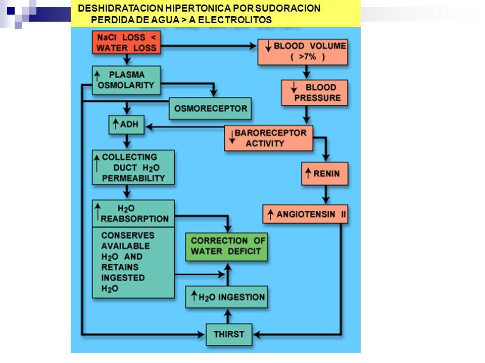 DESHIDRATACION HIPERTONICA POR SUDORACION PERDIDA DE AGUA > A ELECTROLITOS