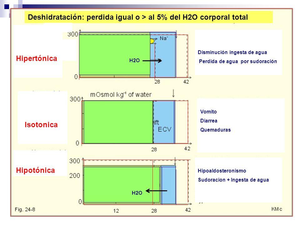 Deshidratación: perdida igual o > al 5% del H2O corporal total Hipertónica Isotonica Hipotónica Disminución ingesta de agua Perdida de agua por sudora