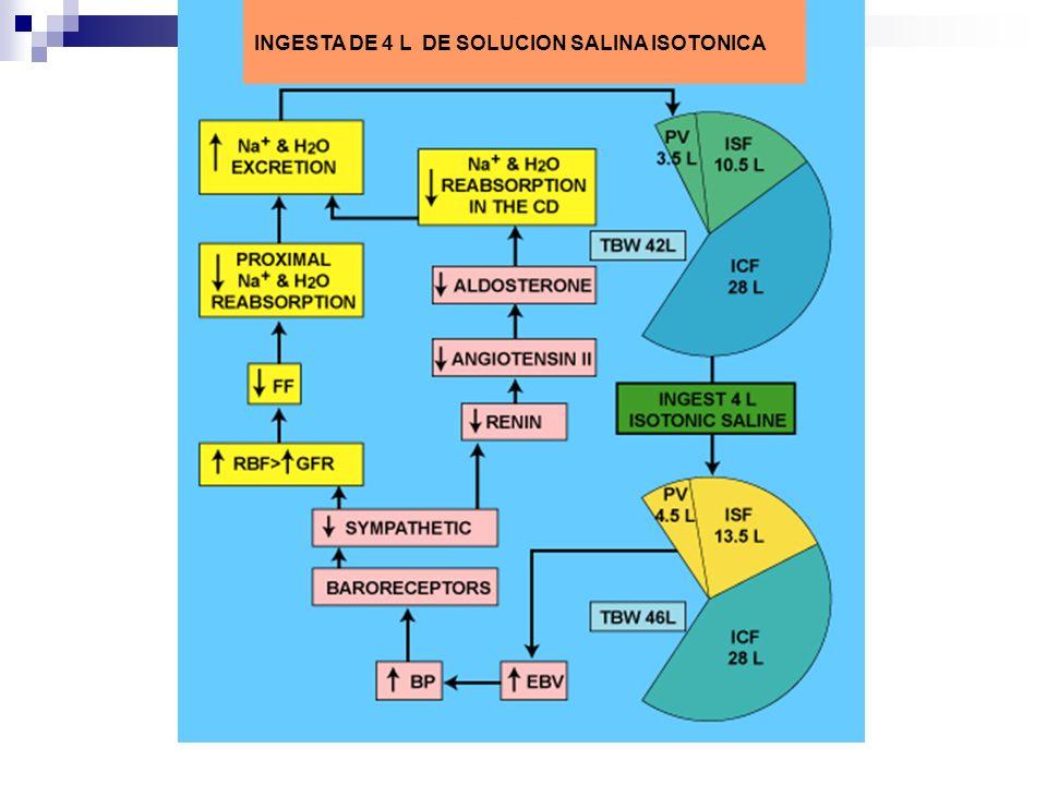 INGESTA DE 4 L DE SOLUCION SALINA ISOTONICA