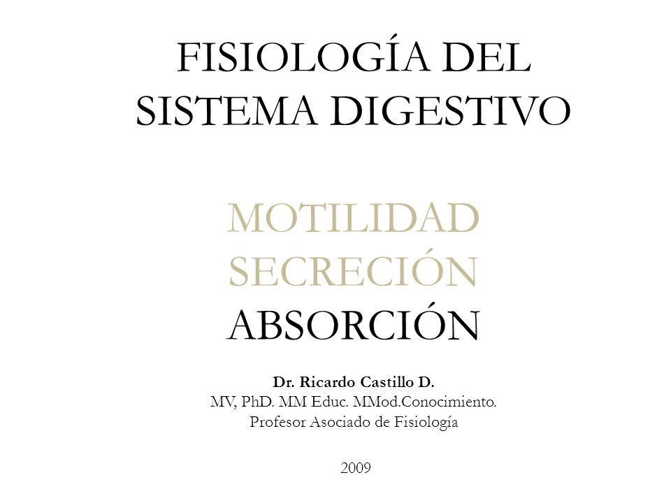 FISIOLOGÍA DEL SISTEMA DIGESTIVO MOTILIDAD SECRECIÓN ABSORCIÓN Dr. Ricardo Castillo D. MV, PhD. MM Educ. MMod.Conocimiento. Profesor Asociado de Fisio