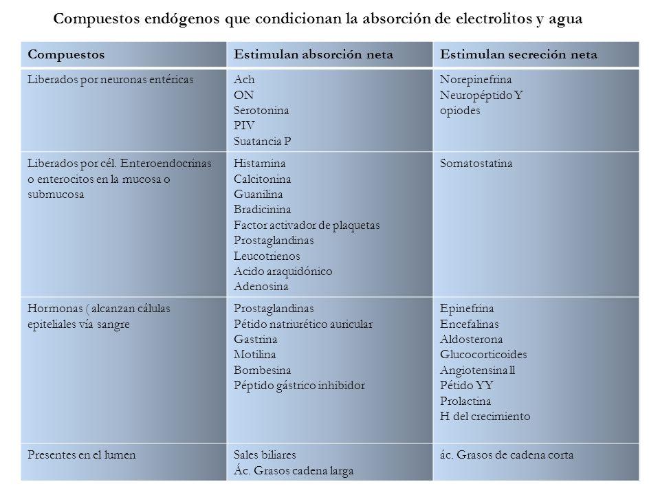 CompuestosEstimulan absorción netaEstimulan secreción neta Liberados por neuronas entéricasAch ON Serotonina PIV Suatancia P Norepinefrina Neuropéptid