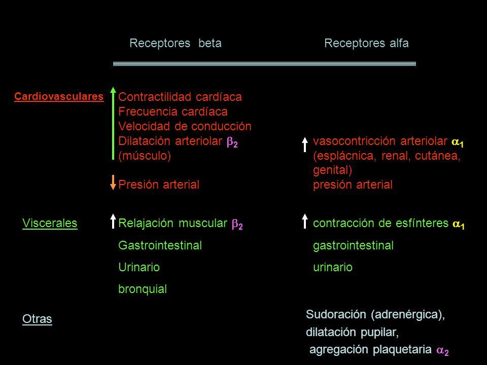 Receptores betaReceptores alfa Contractilidad cardíaca 1 Frecuencia cardíaca 1 Velocidad de conducción 1 Dilatación arteriolar 2 vasocontricción arter