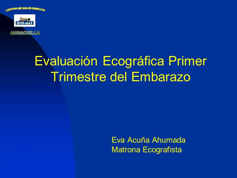 Objetivos de la 1ª Ecografía Con Ecografía transvaginal: 1.Diagnóstico de Embarazo 2.Ubicación 3.Nº Fetos 4.Viabilidad Fetal 5.Edad gestacional 6.Amniocidad y corionicidad en los embarazos múltiples.