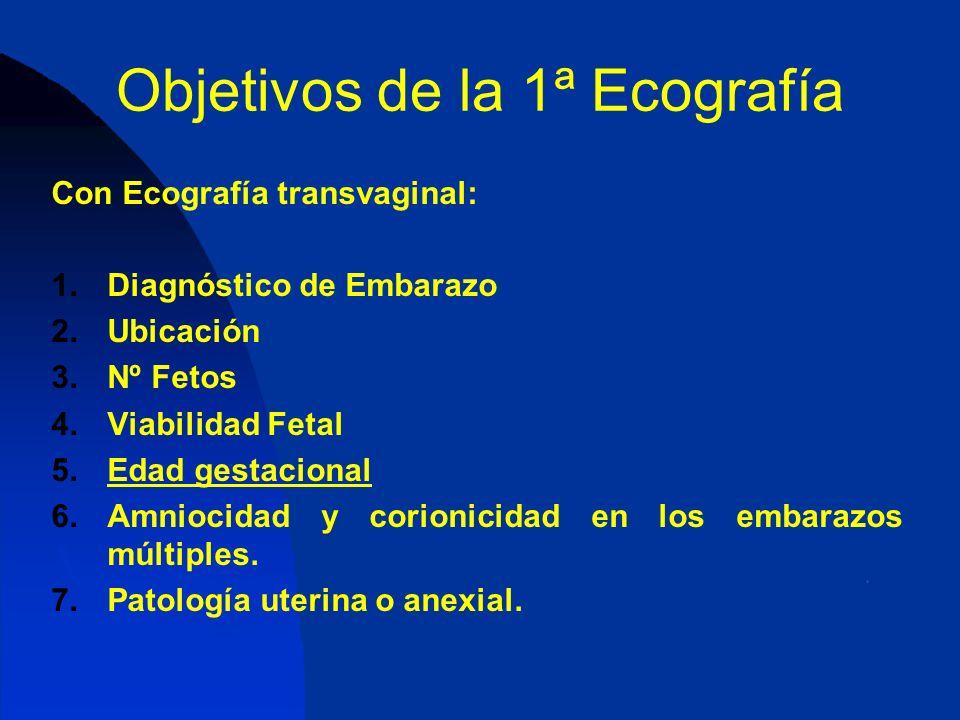 Objetivos de la 1ª Ecografía Con Ecografía transvaginal: 1.Diagnóstico de Embarazo 2.Ubicación 3.Nº Fetos 4.Viabilidad Fetal 5.Edad gestacional 6.Amni