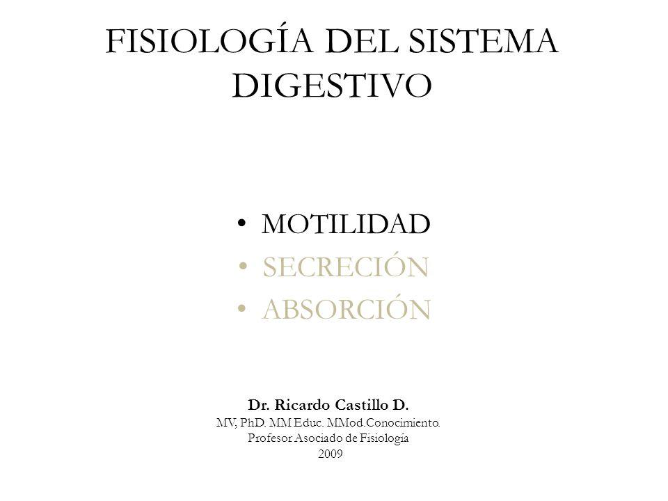 Organización general de las capas del tracto gastrointestinal Meissner Auerbach Sistema nervioso entérico