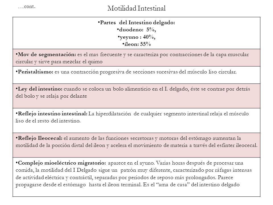 Partes del Intestino delgado: duodeno: 5%, yeyuno : 40%, íleon: 55% Mov de segmentación: es el mas frecuente y se caracteriza por contracciones de la