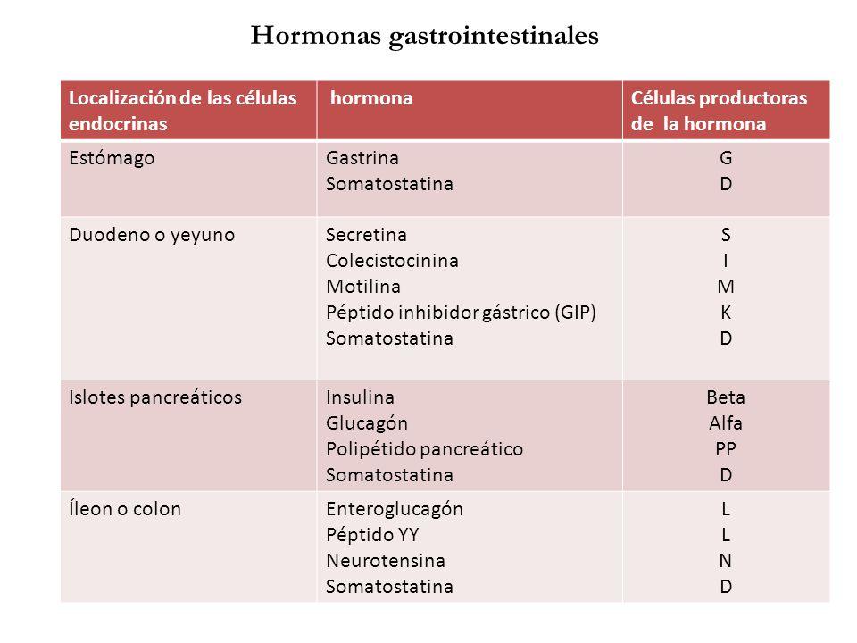 Localización de las células endocrinas hormonaCélulas productoras de la hormona EstómagoGastrina Somatostatina GDGD Duodeno o yeyunoSecretina Colecist