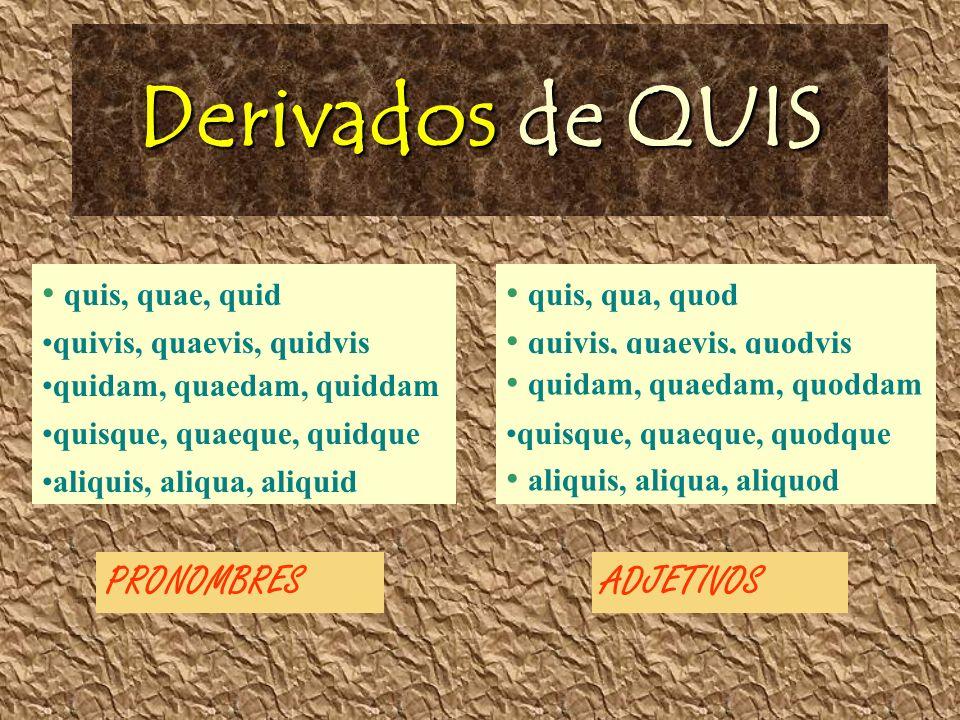 Derivados de QUIS quis, quae, quid quivis, quaevis, quidvis quidam, quaedam, quiddam quisque, quaeque, quidque aliquis, aliqua, aliquid quis, qua, quod quivis, quaevis, quodvis quidam, quaedam, quoddam quisque, quaeque, quodque aliquis, aliqua, aliquod PRONOMBRESADJETIVOS