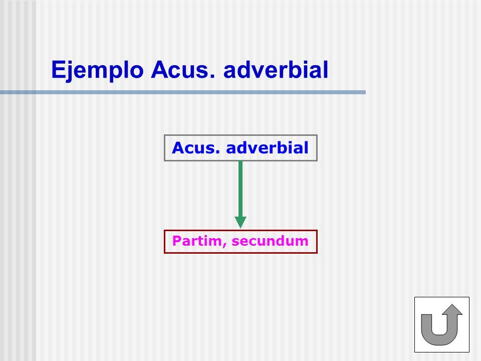 Ejemplo Acus. adverbial Acus. adverbial Partim, secundum
