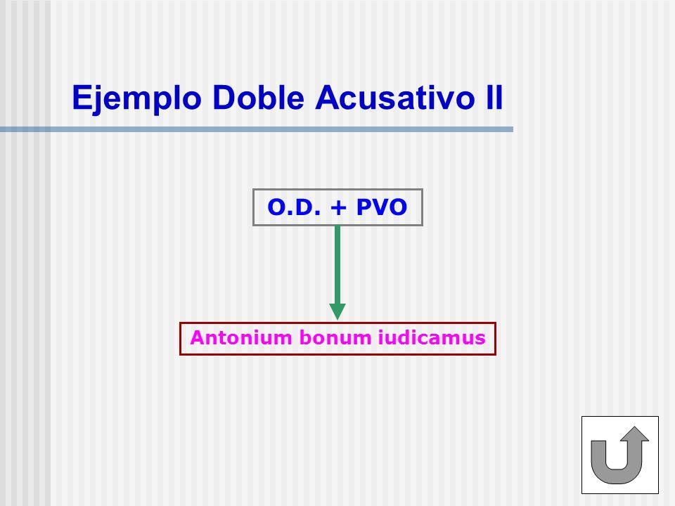 Ejemplo Doble Acusativo II O.D. + PVO Antonium bonum iudicamus