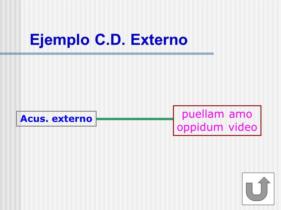 Ejemplo C.D. Externo Acus. externo puellam amo oppidum video