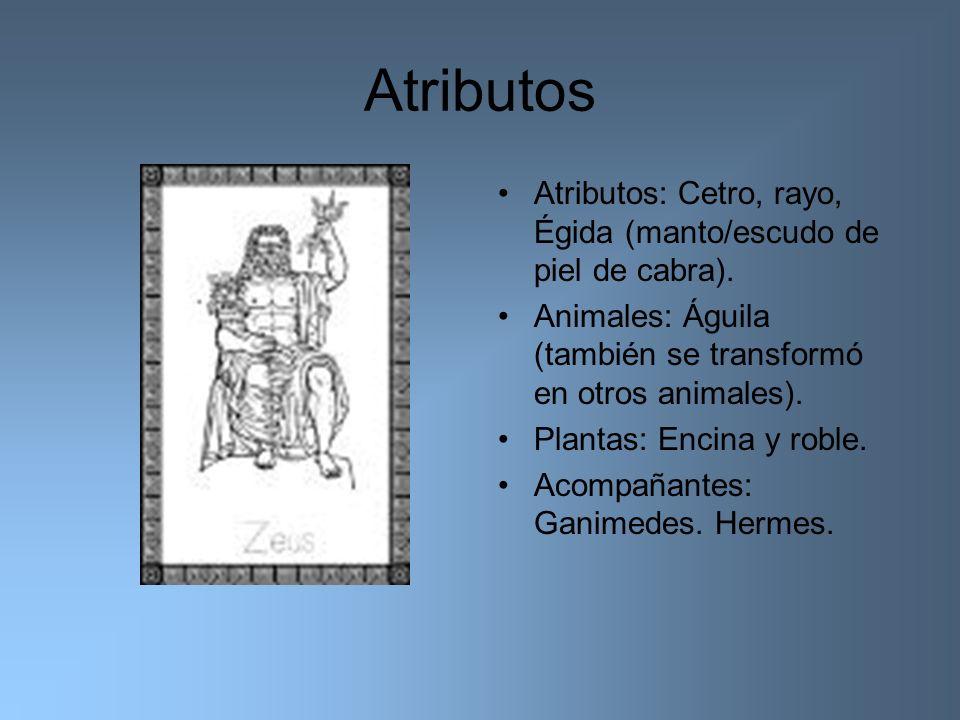 Atributos Atributos: Cetro, rayo, Égida (manto/escudo de piel de cabra). Animales: Águila (también se transformó en otros animales). Plantas: Encina y