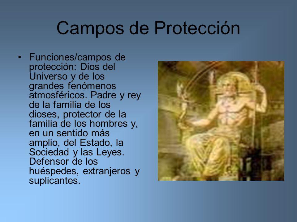 Campos de Protección Funciones/campos de protección: Dios del Universo y de los grandes fenómenos atmosféricos. Padre y rey de la familia de los diose