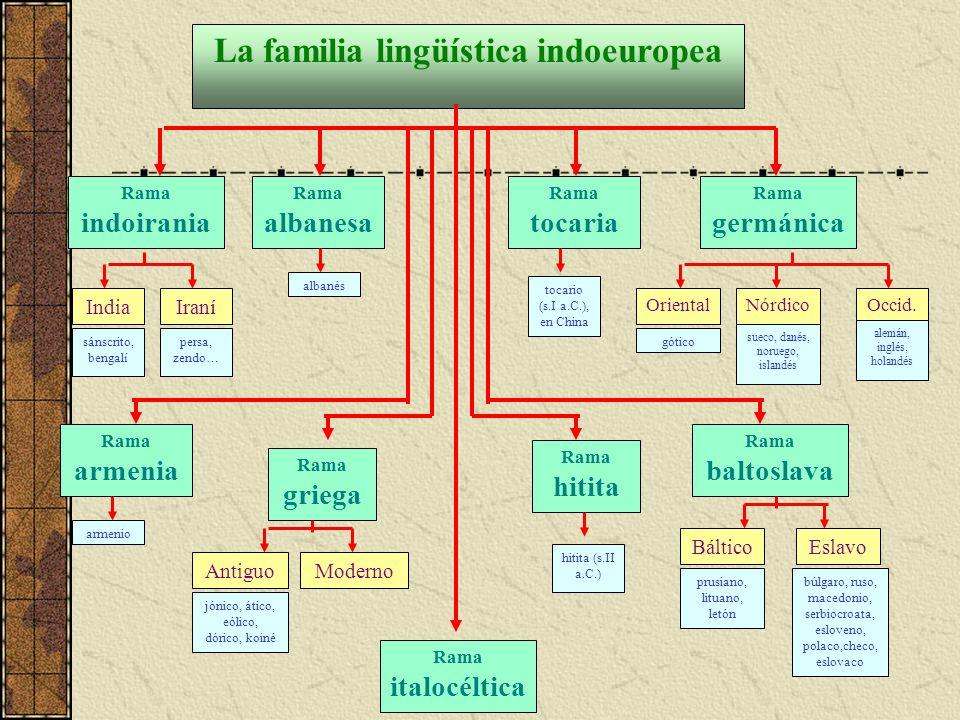 La familia lingüística indoeuropea Rama indoirania India sánscrito, bengalí Iraní persa, zendo… Rama albanesa albanés Rama tocaria tocario (s.I a.C.), en China Rama germánica Oriental gótico Nórdico sueco, danés, noruego, islandés Occid.