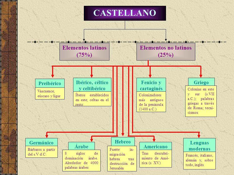 CASTELLANO Elementos latinos (75%) Elementos no latinos (25%) Preibérico Vascuence, eúscaro y ligur Ibérico, céltico y celtibérico Íberos establecidos
