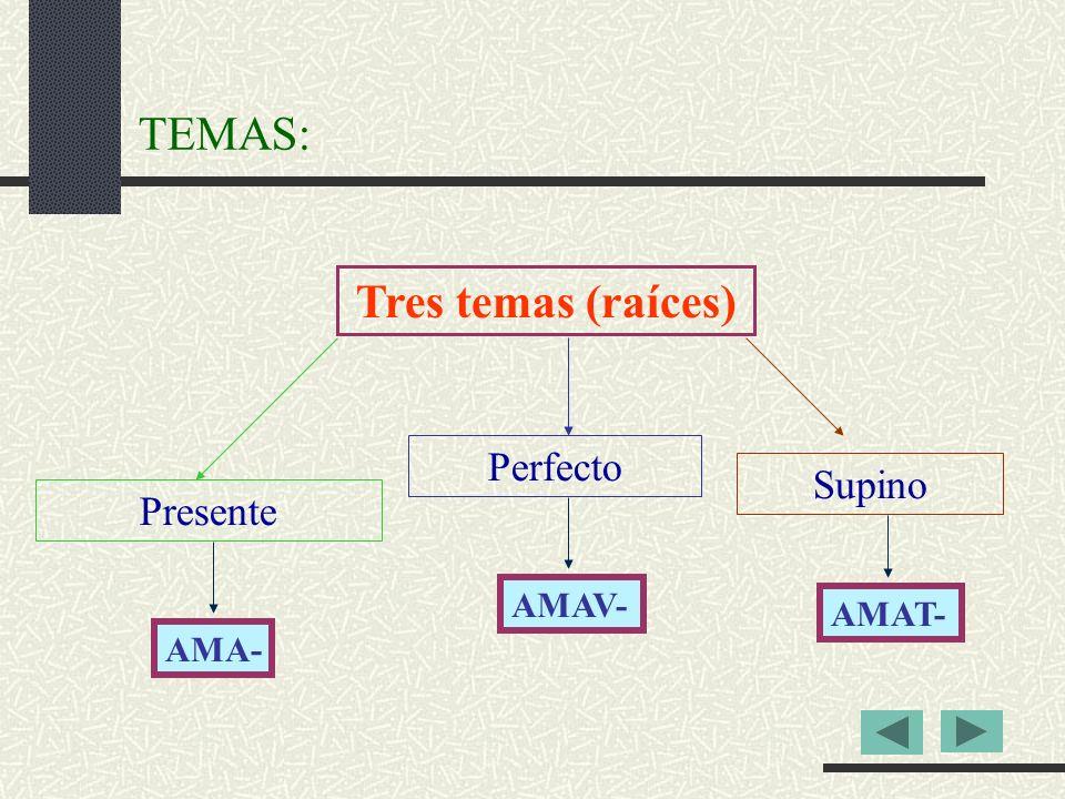 TEMAS: Tres temas (raíces) Presente Perfecto Supino AMA- AMAV- AMAT-