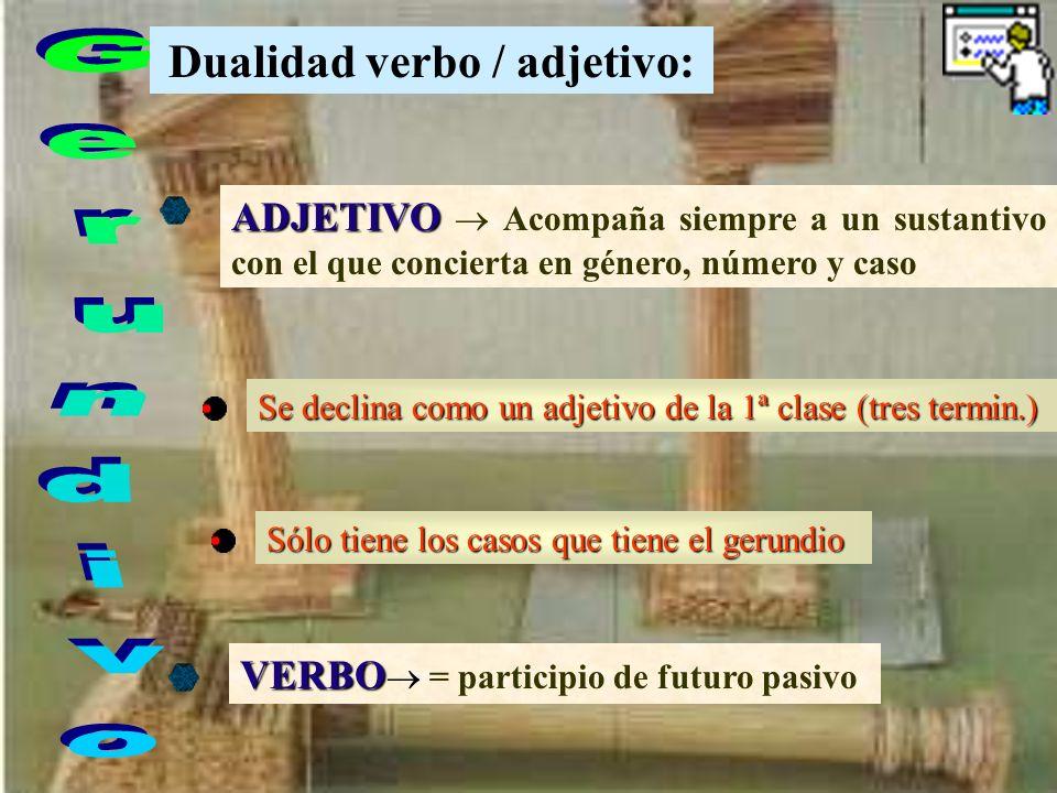 Dualidad verbo / adjetivo: ADJETIVO Acompaña siempre a un sustantivo con el que concierta en género, número y caso Se declina como un adjetivo de la 1ª clase (tres termin.) VERBO = participio de futuro pasivo Sólo tiene los casos que tiene el gerundio