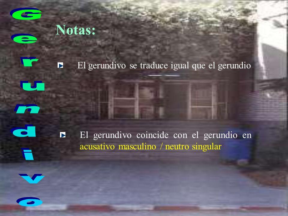 Notas: El gerundivo se traduce igual que el gerundio El gerundivo coincide con el gerundio en acusativo masculino / neutro singular