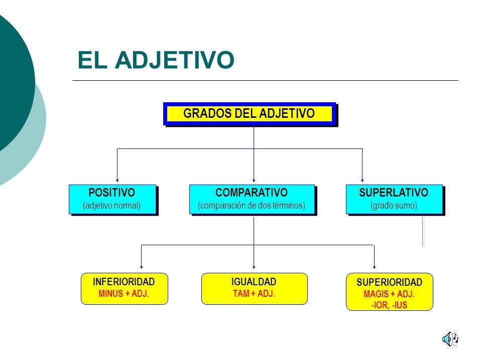 EL ADJETIVO GRADOS DEL ADJETIVO POSITIVO (adjetivo normal) POSITIVO (adjetivo normal) COMPARATIVO (comparación de dos términos) COMPARATIVO (comparación de dos términos) SUPERLATIVO (grado sumo) SUPERLATIVO (grado sumo) INFERIORIDAD MINUS + ADJ.