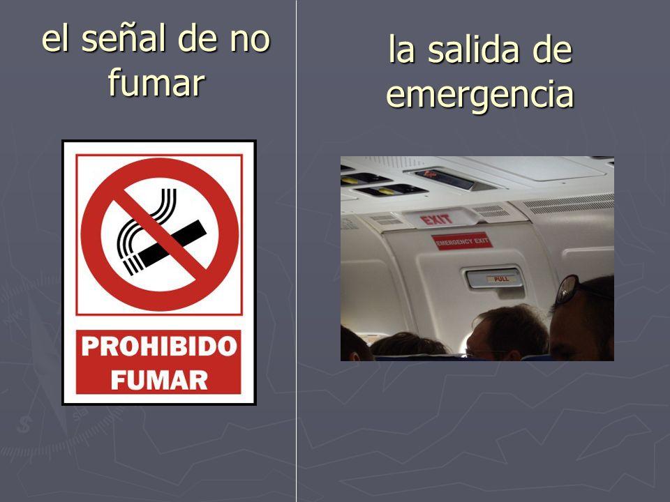 el vuelo el/la pasajero(a)