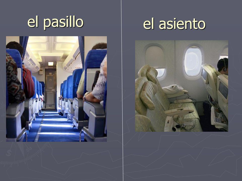 el respaldo del asiento el cinturón de seguridad