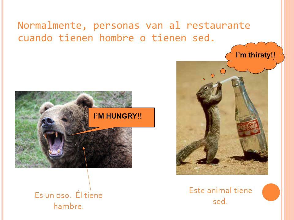 Normalmente, personas van al restaurante cuando tienen hombre o tienen sed. Es un oso. Él tiene hambre. IM HUNGRY!! Este animal tiene sed. Im thirsty!