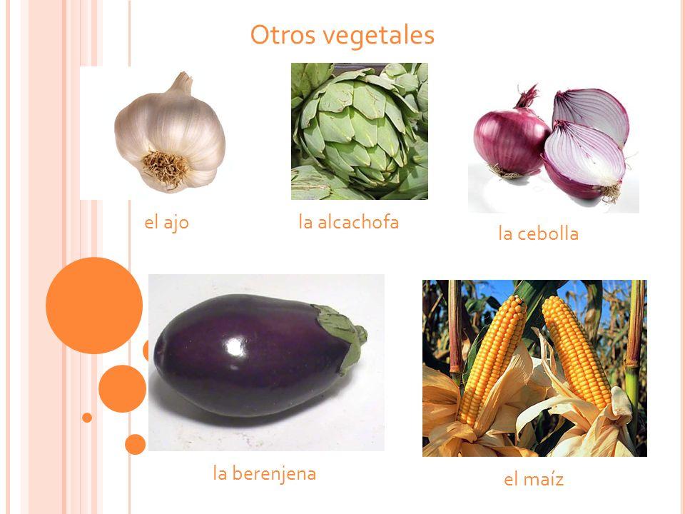Otros vegetales el ajo la berenjena la alcachofa el maíz la cebolla