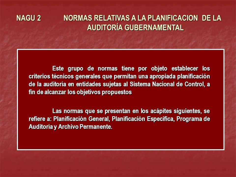 NAGU 2 NORMAS RELATIVAS A LA PLANIFICACION DE LA AUDITORÍA GUBERNAMENTAL Este grupo de normas tiene por objeto establecer los criterios técnicos gener