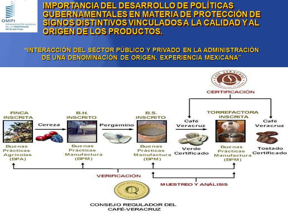 Instituto Mexicano de la Propiedad Industrial INTERACCIÓN DEL SECTOR PÚBLICO Y PRIVADO EN LA ADMINISTRACIÓN DE UNA DENOMINACIÓN DE ORIGEN. EXPERIENCIA