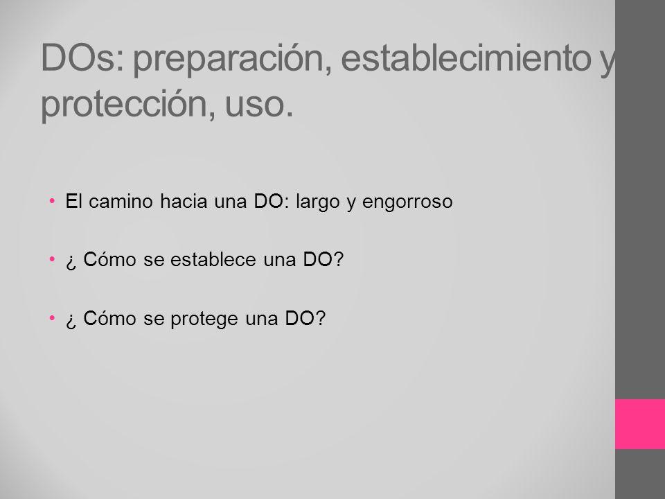DOs: preparación, establecimiento y protección, uso. El camino hacia una DO: largo y engorroso ¿ Cómo se establece una DO? ¿ Cómo se protege una DO?