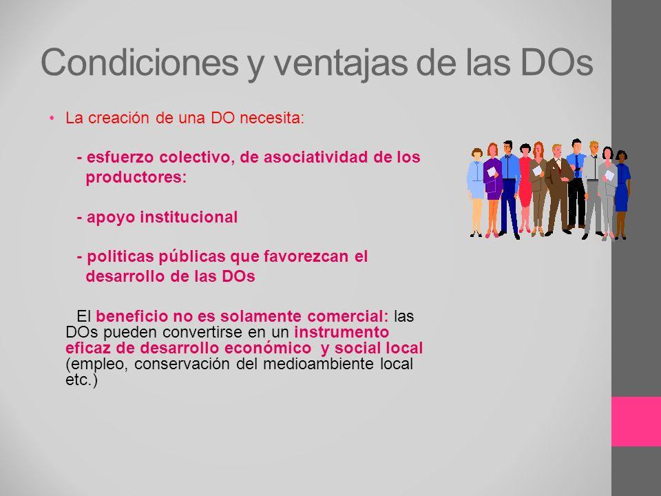 Condiciones y ventajas de las DOs La creación de una DO necesita: - esfuerzo colectivo, de asociatividad de los productores: - apoyo institucional - p