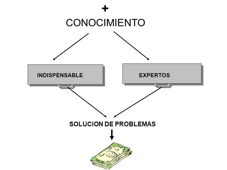 SOLUCION DE PROBLEMAS + CONOCIMIENTO INDISPENSABLE EXPERTOS
