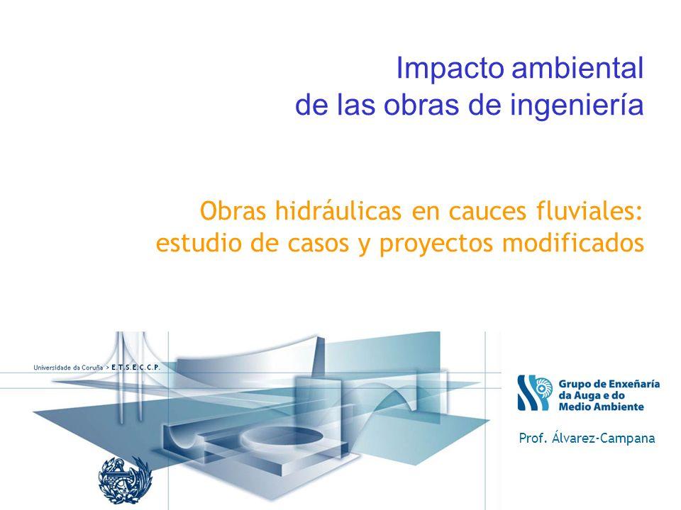 Obras hidráulicas en cauces fluviales: estudio de casos y proyectos modificados Prof. Álvarez-Campana Impacto ambiental de las obras de ingeniería