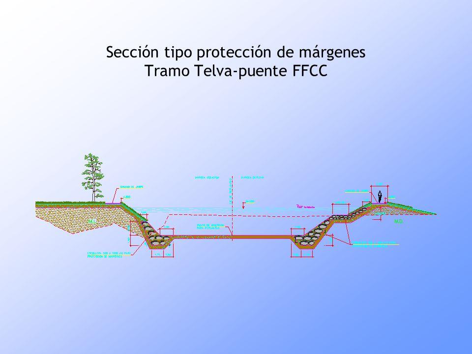 Sección tipo protección de márgenes Tramo Telva-puente FFCC